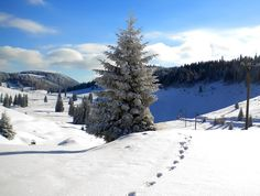 Explore and discover the beauties of Bihor County Turism Romania, Montana, Snow, Explore, Places, Nature, Photography, Travel, Outdoor