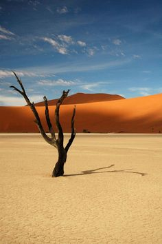 Desert in Namibia_Sivatag Namíbiában