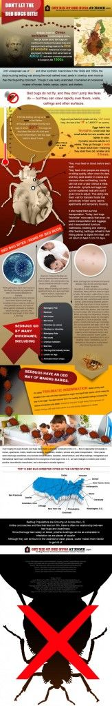 Fresh on IGM > Fighting #BedBugs: Ok they are not a lethal theat but they are biting your flesh and sucking your blood to make their living. Learn how to defeat bugs and reclaim calmness of your sleep.   > http://infographicsmania.com/fighting-bed-bugs/