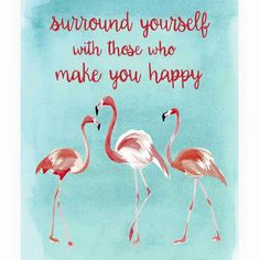 "Three flamingos are pictured on a sea blue background. This dimensional frame will look great in any happy place. ""Surround yourself with those who make you happy."" - measures x made from wood and glass- imported Flamingo Decor, Pink Flamingos, Flamingo Nursery, Flamingo Garden, Flamingo Gifts, Pink Bird, My Spirit Animal, Wall Signs, Painted Rocks"