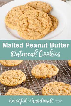 When I was making a batch of regular peanut butter cookies, I opened my pantry for some ingredients and the malted milk powder caught my eye. Peanut butter and malt… why not? Malted Milk Powder Recipe, Malt Powder Recipe, Peanut Butter Roll, Peanut Butter Oatmeal, Peanut Butter Cookies, Milk Recipes, Real Food Recipes, Cookie Recipes, Dessert Recipes