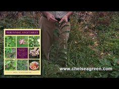 Eric Toensmeier Tours His Backyard Perennial Food Garden (Part 2 of 4) - YouTube