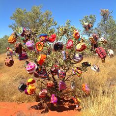 Alice Springs Beanie Festival: volunteers, inspiration, wool and home-made cake (Centralian Yarn Part Textile Fiber Art, Fibre Art, Alice Springs, Textiles, Aboriginal Art, Event Calendar, Homemade Cakes, Knitting Projects, Creations
