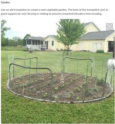 Don't throw your broken trampoline; here are 10 methods ways to reconstruct it