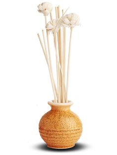 Get most exclusive Reed Diffuser online that would add freshness anywhere.