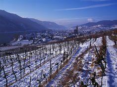 Der Ort Weissenkirchen in der Wachau im Winter.