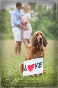 incorporate your loved ones in your love story especially if they are four legged and furry :) Photo by Michael McNett Photography