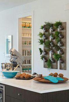 Herb rack - herbs growing in jars mounted on a wooden board
