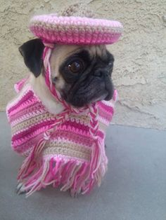 Pugs-Pink Poncho Set-Ponchos For Dogs-Cinco De Mayo-Pugs In Clothes-Puglife-Pugs Not Drugs-Clothing for Dogs