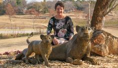 South African sculptor Heidi Hadaway creates custom made bronze sculptures, from small to monumental. Land Art, Bronze Sculpture, Sculptures, Sculpture Art, Panther, Your Pet, Sculpting, Original Artwork, African