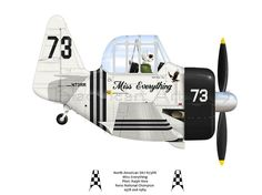 racer Miss Everything. Piloted by Ralph Rina, Miss E won two National Champions at Reno Air races. Airplane Humor, Airplane Crafts, Airplane Art, Aviation Humor, Aviation Art, Ww2 Aircraft, Military Aircraft, Cartoon Plane, Pilot Humor