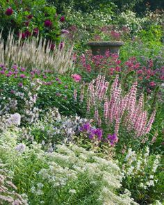 This seemed to me to be cottage garden planting density. Delicate blooms in pink, white, and purple nearly cover the antique urn in this English garden at Wollerton Old Hall. Photo by Clive Nichols Garden Photography. Herbaceous Perennials, Flowers Perennials, Plants, Gorgeous Gardens, Urban Garden, Garden Photography, Garden Borders, Pretty Gardens, Beautiful Gardens