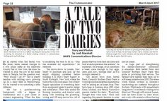 A Tale of Two Dairies in The Communicator. A chance to read about two great farms with Bob-White Systems Connection.