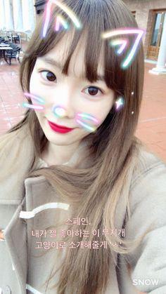 taeyeon_ss: 스페인. 내가 젤 좋아하는 이 무지개 고양이로 소개해줄게 'ㅅ'