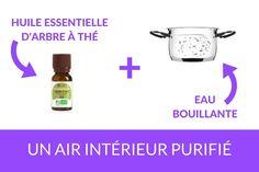 Comment purifier l'air de la maison  http://www.homelisty.com/astuces-menage/