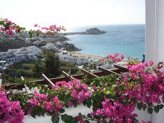 Buganvilla in Mykonos Mykonos Grecia, Greece, Around The Worlds, Landscape, Architecture, Nice, Places, Gardens, Flower
