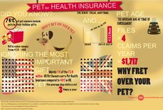 Pet health insurance info graphic