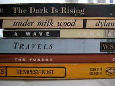 Book spine poetry =)