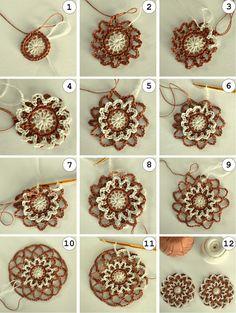 Sea Snail Shell: Coffee Flower Coasters