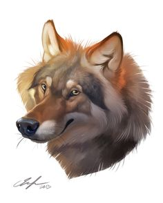 Demo Wolf by Therese Larsson, via Behance