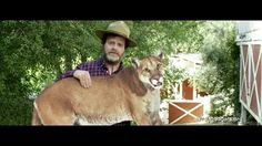 Why is @rainnwilson picking up a cougar? Watch this video to find out! #SaveLACougars
