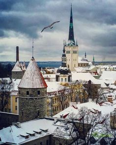 Christmas in Tallinn Estonia 2016.