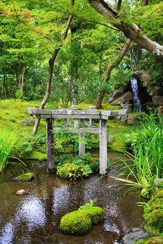 京都南禅寺大寧軒の珍しい三柱鳥居と苔