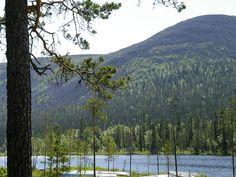 Lake Kesänki at Ylläs