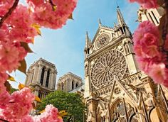 Notre Dame cathedral. #paris #travel #France