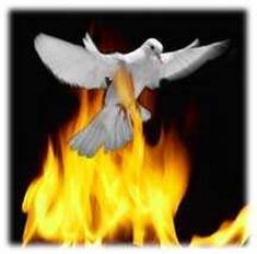 A white dove flies through the Holy Fire in Jerusalem without being burned.