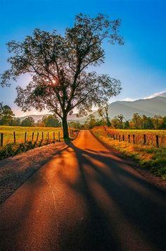 Cades Cove, Smoky Mountains National Park