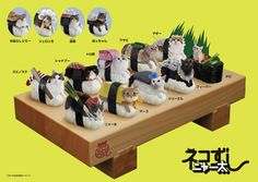 'Neko-Sushi' is a collection of pictures of cats on sushi. An inexplicably amazing brainchild of Japan-based company Tange & Nakimushi Peanuts, this series of postcards features bizarre images of cute kittens sitting on top of sushi rice rolls.