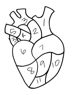 Human heart pattern use the printable outline for crafts creating anatomical heart pillow heartsandsharts ccuart Choice Image