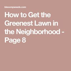 How to Get the Greenest Lawn in the Neighborhood - Page 8