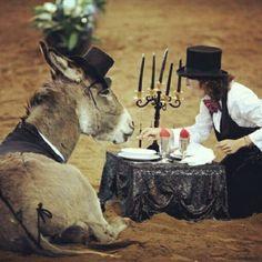 Una cena romantica a #fieracavalli! #whyilovehorses
