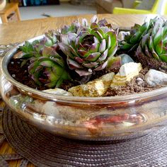 Oooooooo love this idea... Work with what you've got. Succulent clippings and tarnished silver.