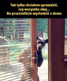 Polish Memes, Funny Mems, Cut Animals, Wtf Funny, Haha, Jokes, Cute, Pictures, Crowns