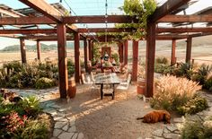 From innovative designs, picturesque views and award winning wines, keep reading to discover 9 must visit Valle de Guadalupe wineries. Gazebo, Pergola, Wine Vineyards, Baja California, Northern California, California Style, Mexico Travel, Wine Country, Outdoor Structures
