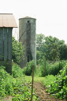 Old, old silo and garden
