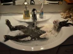 Relax in a hot bath