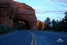 Sur la route de Bryce Canyon - 4 coins du monde