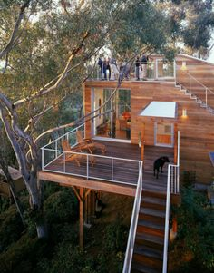 If I could pick any treehouse to live in... it would be this one.