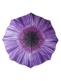 Purple Daisy Folding Umbrella