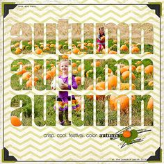 autumn; kits: Designer Digitals/Katie Pertiet/ Fine Line Border Lines No 8, Inking Pumpkins brushes, Curated Studio Mix No 20 Paper, Harvest of Pumpkins, Scribbling Clusters No 1, Min Jul Element Pack corners, drop shadow style