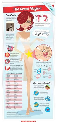 Vagina Statistics Sex 1 600x1325 Infographic - http://infographicality.com/vagina-statistics-sex-1-600x1325-infographic/