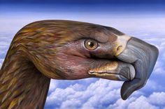 guido daniele, european eagle hand art