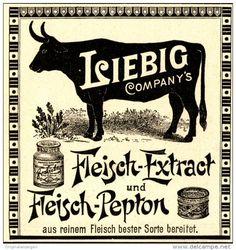Original-Werbung/ Anzeige 1898 - LIEBIG COMPANY´S FLEISCH - EXTRACT - ca. 80 x…