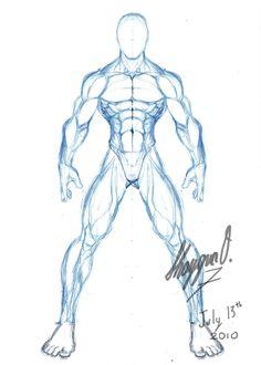 Male Anatomy Template: Front by Shintenzu on deviantART