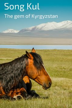 Song Kul lake, one of the most beautiful places in Kyrgyzstan - and considering how beautiful Kyrgzystan is... - plan to stay the night in a yurt and enjoy nature and peace - Click to open the guide with many photos and detailed information to plan your visit
