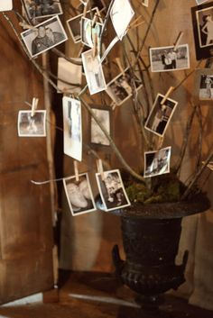 Whimsy: Randy & Elizabeth (tree with old pictures )